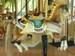 Carouselhorse1_3